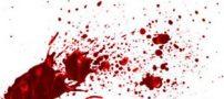 همخوابی خواهر شوهردار با رفیق برادر به قتل انجامید