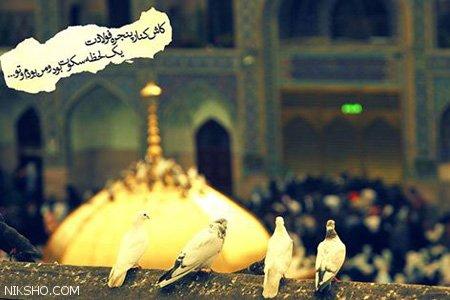 تبریک ولادت امام رضا با عکس نوشته های ناب
