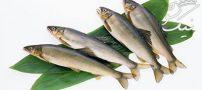خوردن ماهی و ۷ خاصیت فوق العاده مفید