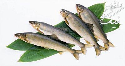 خوردن ماهی و 7 خاصیت فوق العاده مفید