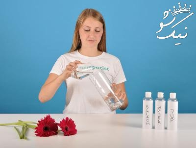 9 ترفند عالی برای تازه نگه داشتن گل ها