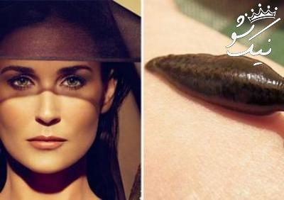 دمی مور Demi Moore بازیگر پرحاشیه |بیوگرافی کامل و عکسهای خفن
