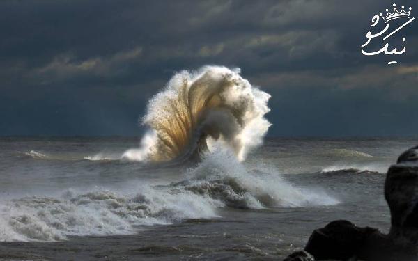 تصاویر خارق العاده از جهان و موجودات