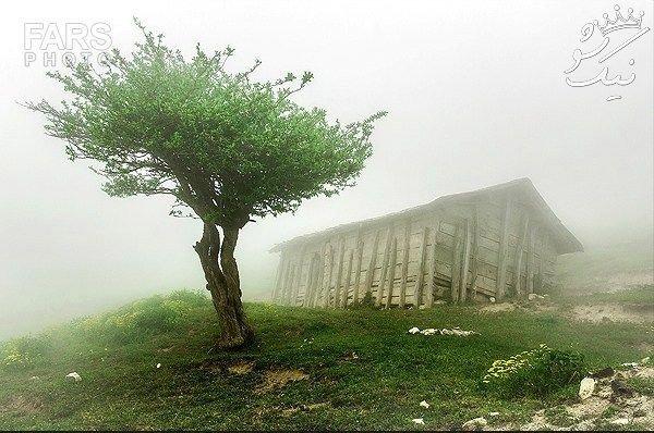 سفر به ماسال بهشت رویایی شمال ایران +عکس