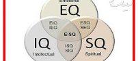 همه چیز درباره هوش اجتماعی یا SQ