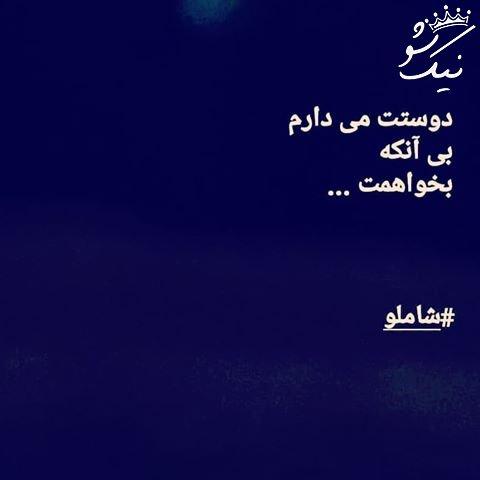 دوستت می دارم ، بی آنکه بخواهمت | احمد شاملو