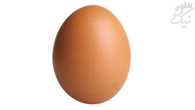 ماجرای پرلایک ترین عکس اینستاگرام   پیام تخم مرغ مشهور چه بود؟
