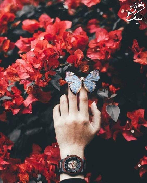 عکس پروفایل منظره عاشقانه | عکس طبیعت رویایی