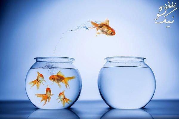 تغییر در زندگی شخصی و کاری   چرا اینقدر سخت است؟