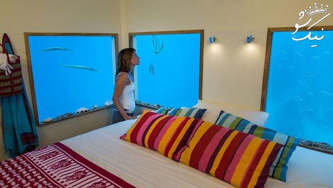 هتل هایی در دل طبیعت وحشی | آب تنی در کنار حیوانات!