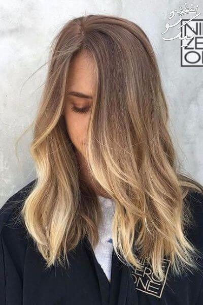 سامبره چیست؟ | سامبره موی کوتاه | سامبره لایت
