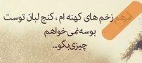 شعر مرهم زخمهایم کنج لبان توست احمد شاملو