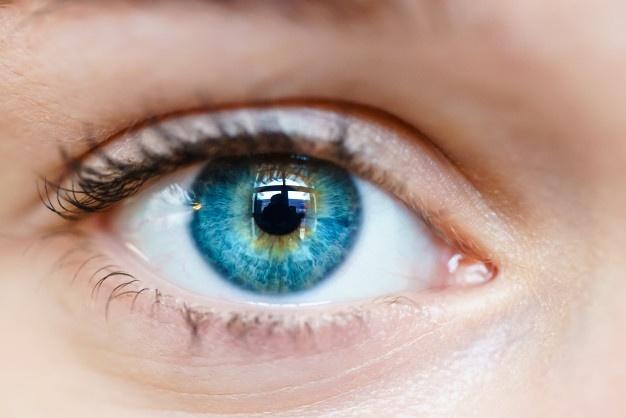 آیا مواد غذایی واقعا در بهبود بینایی تاثیر دارند؟