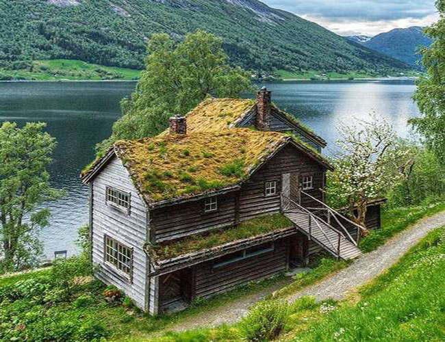 نکات خواندنی درباره کشور نروژ که نمی دانستید