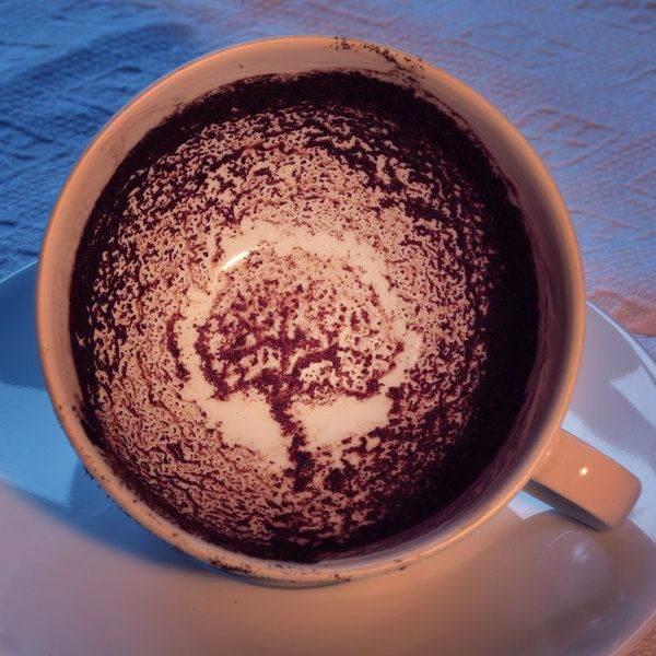 درخت در فال قهوه نشانه چیست؟ تعبیر درخت