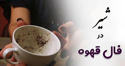 دیدن شیر در فال قهوه نشانه چیست؟ تعبیر کامل