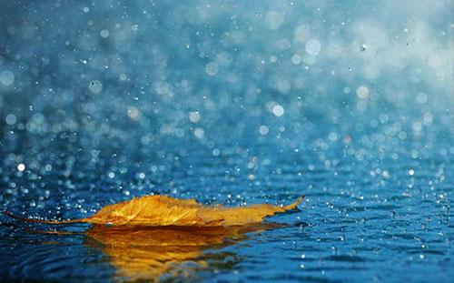 انشا عینی درمورد باران ،جدید و زیبا