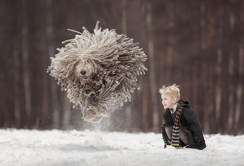 تصاویر دیدنی بازی پسر بچه با سگ پشمالوی زیبا