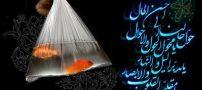 عکس های زیبا برای تبریک گفتن عید نوروز 98