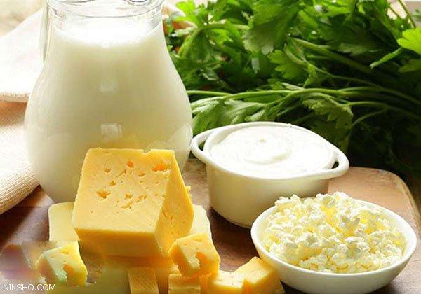 درباره محصولات پروبیوتیک و فواید آن ها بیشتر بدانیم