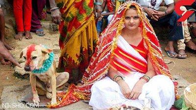 ازدواج دختر هندی با یک سگ جنجال شدید به پا کرد