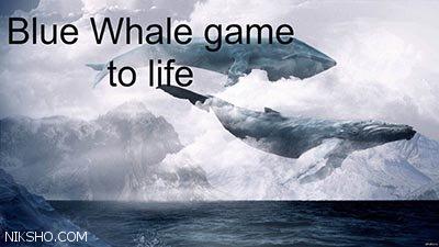 همه چیز درباره چالش نهنگ آبی!