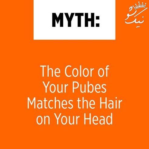 همه چیز درباره موهای اندام تناسلی زنان و نکات مهم