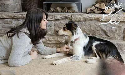 زن و شوهری که زبان حیوانات را می فهمند +عکس