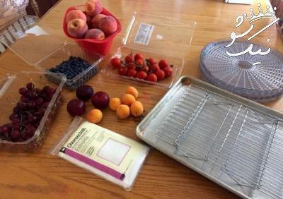طرز خشک کردن انواع میوه ها در آفتاب
