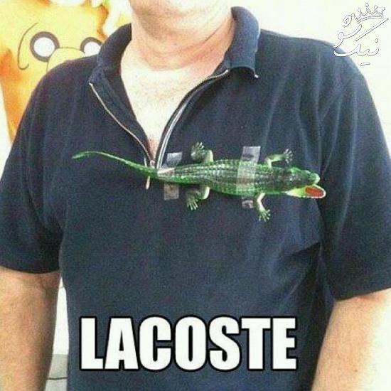عکس های خنده دار باحال از خنده بترکید