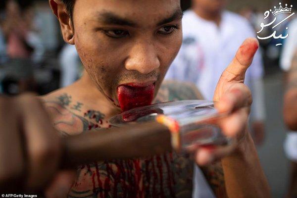جشنواره منزجر کننده گیاهخواران در تایلند +16