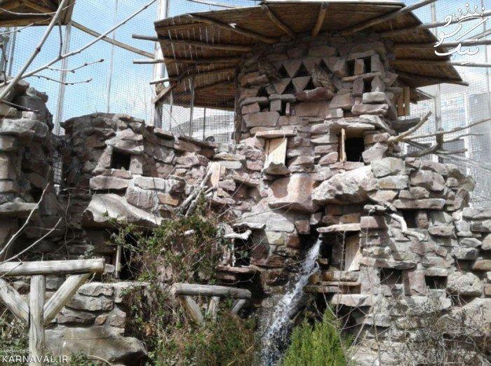 باغ پرندگان تهران کجاست؟ | قیمت بلیط | مترو