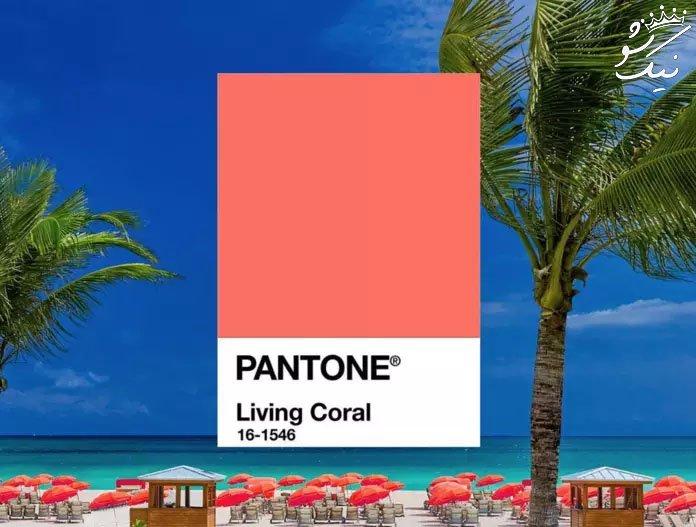 مرجانی رنگ سال 2019 از طرف پنتون معرفی شد
