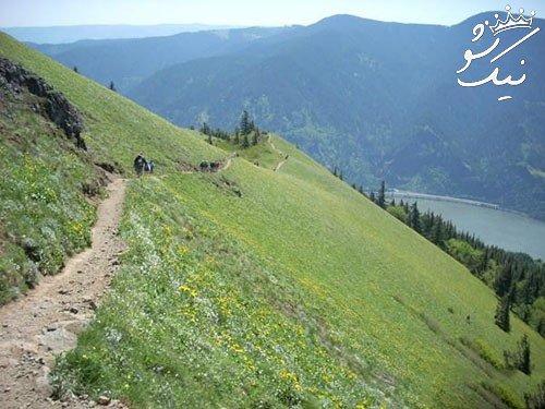 تعبیر خواب کوه   پرت شدن از کوه   کوهنوردی