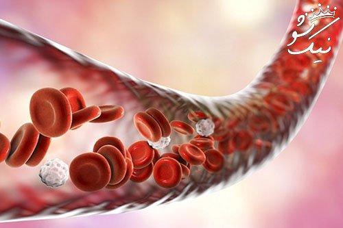 همه چیز درباره خون بند ناف ، ناجی بیماری های انسان