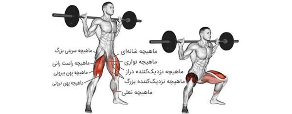 بهترین ورزش برای لاغری پایین تنه