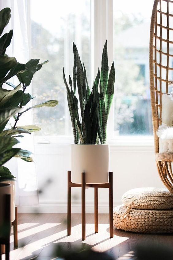 انواع استند گلدان واقعا شیک و زیبا | استند نردبانی گل آپارتمانی