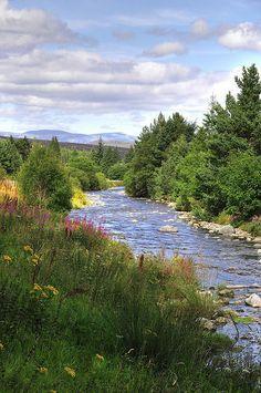 عکس پروفایل طبیعت زیبا ، چهار فصل