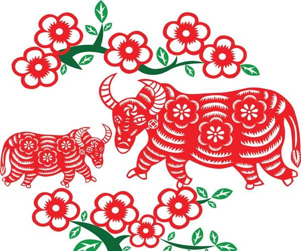 طالع بینی چینی متولدین سال گاو