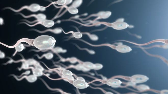 چرا قرص ضدبارداری مردانه به تولید انبوه نمی رسد؟
