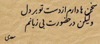 شعر زیبا سخنها دارم از دست تو در دل از سعدی