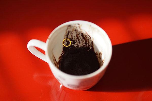 لنگر در فال قهوه به چه معناست؟ لنگر کشتی در فال قهوه