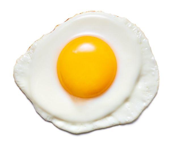 آیا مصرف تخم مرغ می تواند مضر باشد؟
