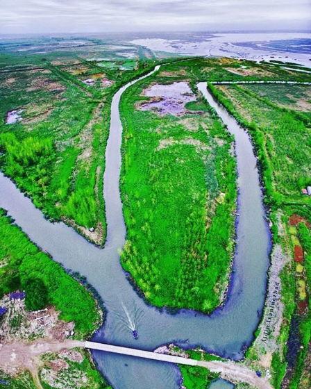 سفر به تالاب انزلی گیلان | لاله های زیبای مرداب انزلی