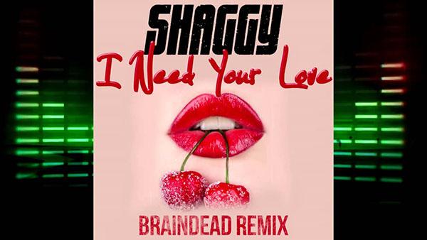دانلود آهنگ I Need Your Love از Shaggy Mohombi
