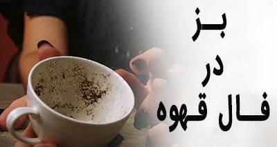 بز در فال قهوه به چه معناست؟ تعبیر بز