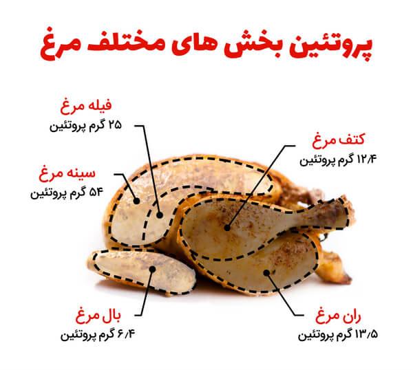 میزان پروتئین سینه مرغ چقدر است؟