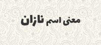 معنی اسم نازان ، ریشه اسم و لغت نامه فارسی