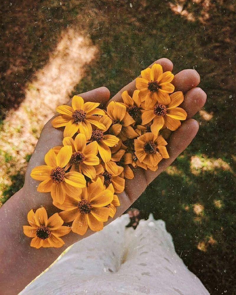 70 عکس دخترونه باحال پاییزی، جدید فانتزی و لاکچری