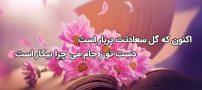 شعر اکنون که گل سعادتت پر بار است از خیام